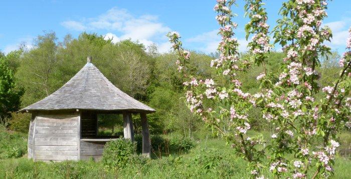 Round House Blossom